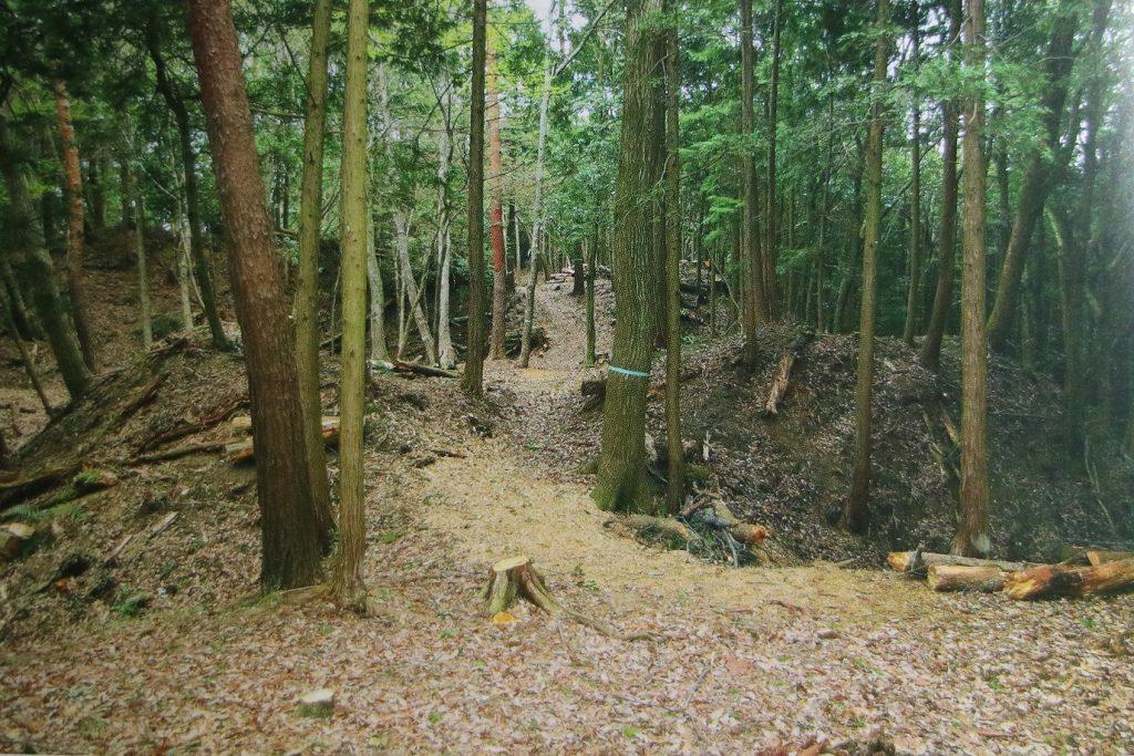 忍びの里 甲賀 日本遺産の文化財群 甲賀の中世城館群