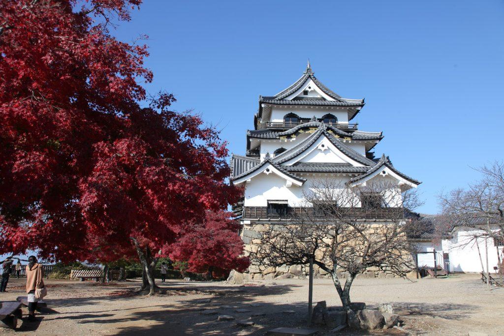 滋賀県 11月の主なイベント