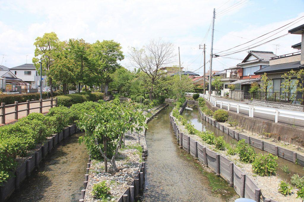 日本遺産・琵琶湖 祈りと暮らしの水遺産 守山の湧水とホタル